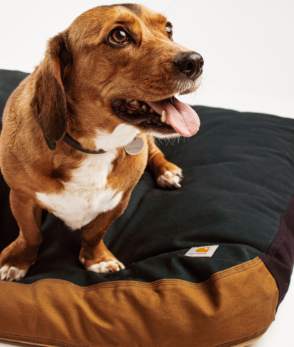 Carhartt WIP Dog Bed